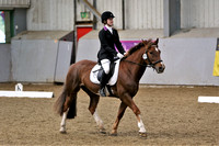 Myerscough dressage
