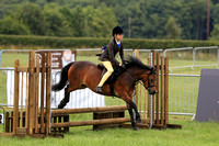 Bowland Brewery 107-111 BSPS working hunter